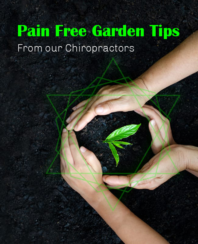 Pain Free Gardening Tips from our Chiropractors